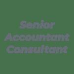 Senior Accountant Consultant_dark