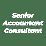 Senior Accountant Consultant_light